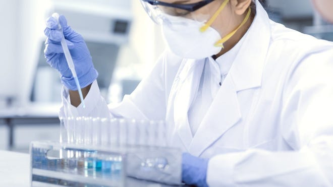 Sorrento Therapeutics' stock rose sharply on Wednesday, after the company released promising early data on its experimental new COVID-19 vaccine.